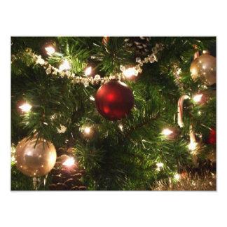 Kerstboom I Mooie Groen van de Vakantie en Rood Fotoafdrukken