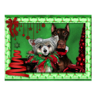 Kerstmis - de Rode Boom van het Lint - Doberman Briefkaart