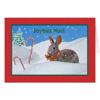 Kerstmis, Joyeux Noël, het Frans, Konijn, Sneeuw, Wenskaart
