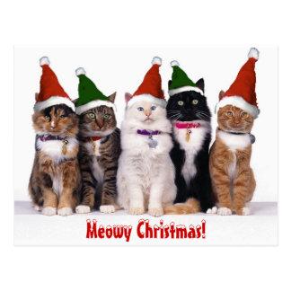 """""""Kerstmis Meowy!"""" Katten Briefkaart"""
