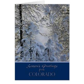 Kerstmis van de Kaart van Colorado