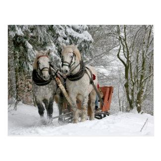 Kerstmis van de Paarden van het ontwerp Briefkaart