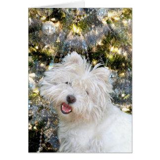 Kerstmis van Westie Kaart