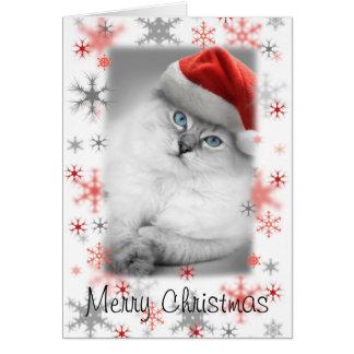Kerstmiskaart van het santakat kaart