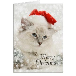 Kerstmiskaart van Ragdoll Kaart