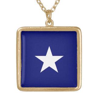 Ketting van de Vlag van Bonnie het Blauwe