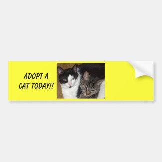 Keur een Sticker van de Bumper van de Kat goed
