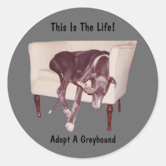 Keur een Windhond goed dit de Sticker van het Leve
