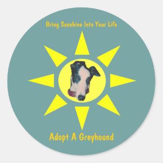 Keur een Zonneschijn van de Windhond in Uw Sticker