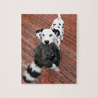 Kevin Dalmatian Puzzel