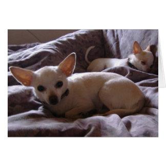 Kielzog op de Kaart van de Nota Chihuahua