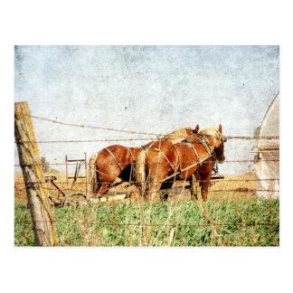 Klaar voor het Werk, Twee Paarden van het Ontwerp Briefkaart