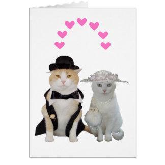 Klantgerichte Grappige, Mooie Katten Valentijn Wenskaart