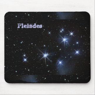 (Klantgerichte) Pleiades Muismat