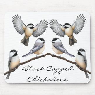 Klantgerichte Zwarte Afgedekte Chickadees Mousepad Muismatten