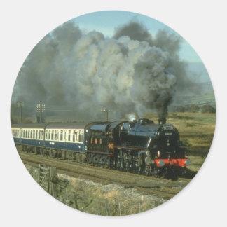 Klasse 5 Nr 5407 kruist andere Gemeenschappelijke Ronde Sticker