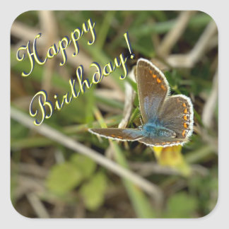 Kleine vrouwelijke blauwe vlinder vierkante sticker