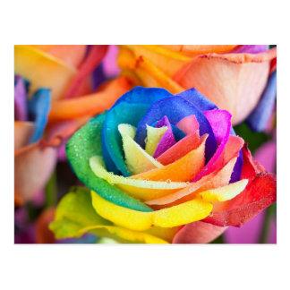 kleuren bloem briefkaart