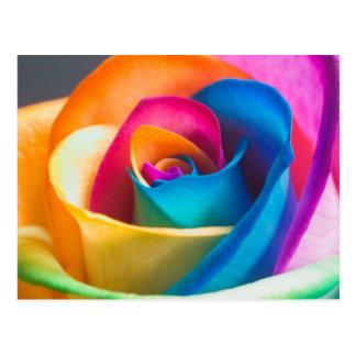 Kleurrijk nam toe briefkaart