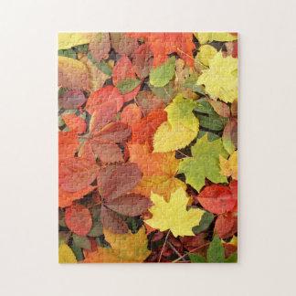 Kleurrijke Achtergrond van de Gevallen Bladeren Puzzel