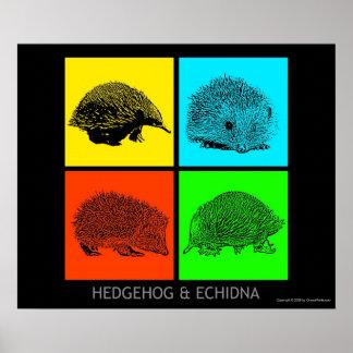 Kleurrijke Egel en Echidna Poster