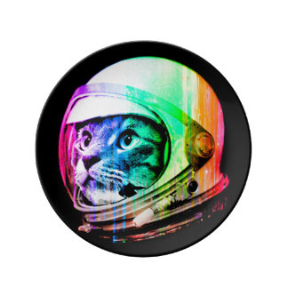 kleurrijke katten - de astronaut van de Kat - Porseleinen Bord