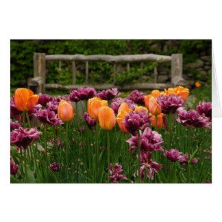 Kleurrijke Tulpen Kaart