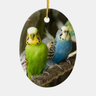 Kleurrijke Vogel Budgie Keramisch Ovaal Ornament