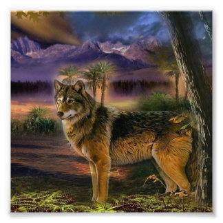 Kleurrijke wolf in het bos foto kunst