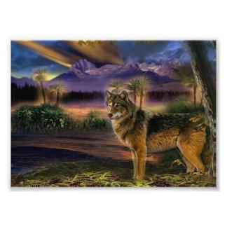Kleurrijke wolf in het bos fotoafdrukken
