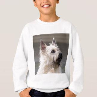 Knappe jongen trui