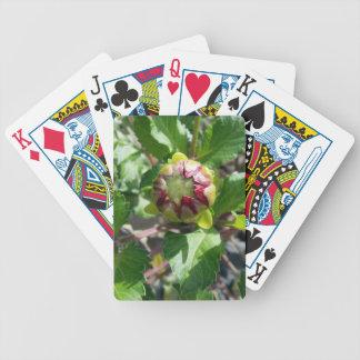 knop in de herfst pak kaarten