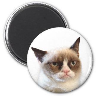 Knorrige Kat om Magneet