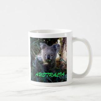 Koala, AUSTRALIË Koffiemok