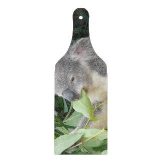 Koala die het Blad van de Gom eten Snijplank