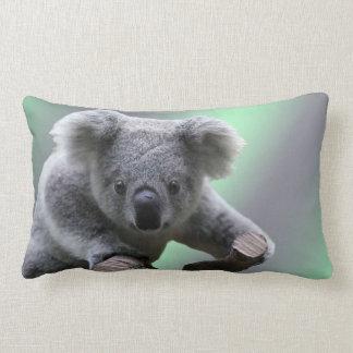 Koala Lumbar Kussen