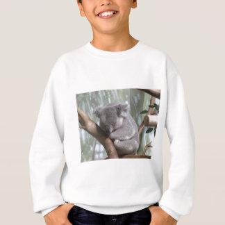 koala trui