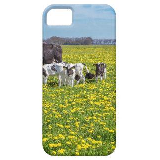 Koe met kalveren die in weide met paardebloemen barely there iPhone 5 hoesje