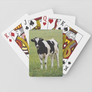 Koe op gebied van Wildflowers Speelkaarten