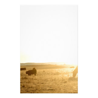 Koeien bij Zonsopgang op de Prairies Briefpapier