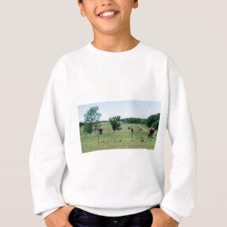 Koeien (op boerderij) trui
