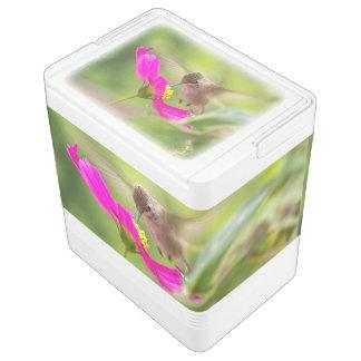 Koelbox van het Wild van de Bloem van de Vogel van Igloo Koelbox