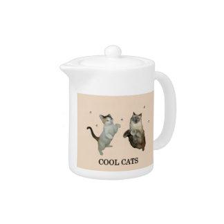 Koele Katten
