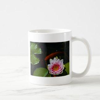 koi die rond lotusbloem zwemt koffiemok