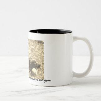 Kokosnoten over u koffiemok