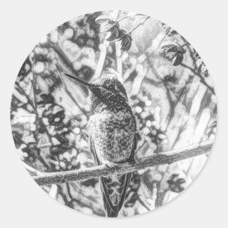 Kolibrie in Zwart-witte Stickers