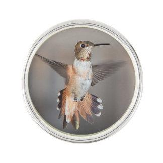 Kolibrie tijdens de vlucht reverspeldje
