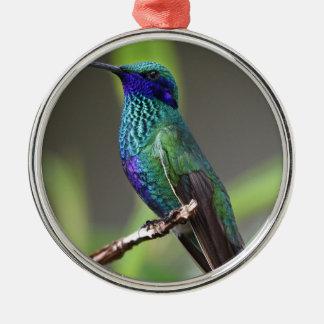 kolibrie zilverkleurig rond ornament