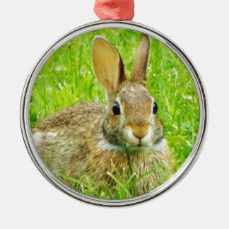 konijn zilverkleurig rond ornament