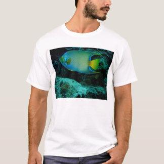 Koningin Angel Fish T Shirt
